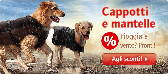 http://www.zooplus.it/-zap157991/bilder/1/2014_10_DogCoats_658x290_IT_1.jpg
