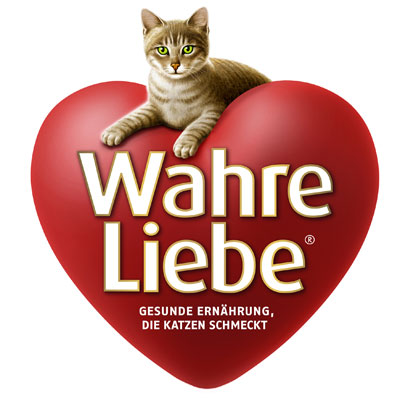 Wahre Liebe Chat