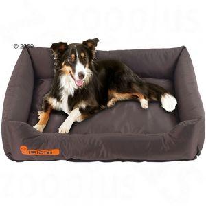 Come scegliere il letto per il cane - Letto per cani ...