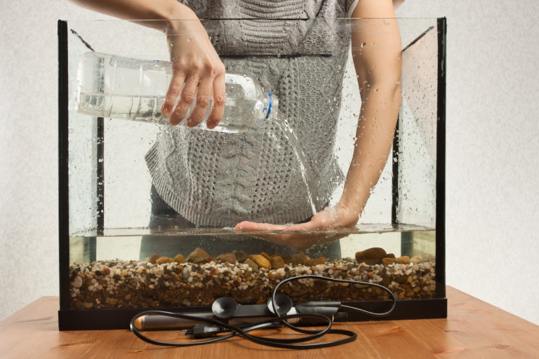 acquarista che aggiunge acqua