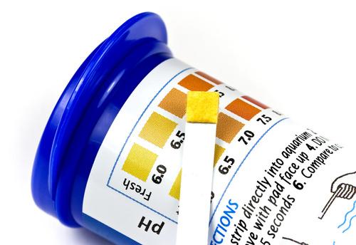 strisce per la misurazione del pH