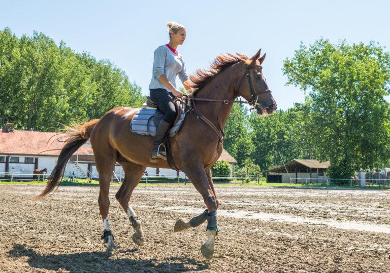 andare a cavallo da adulti