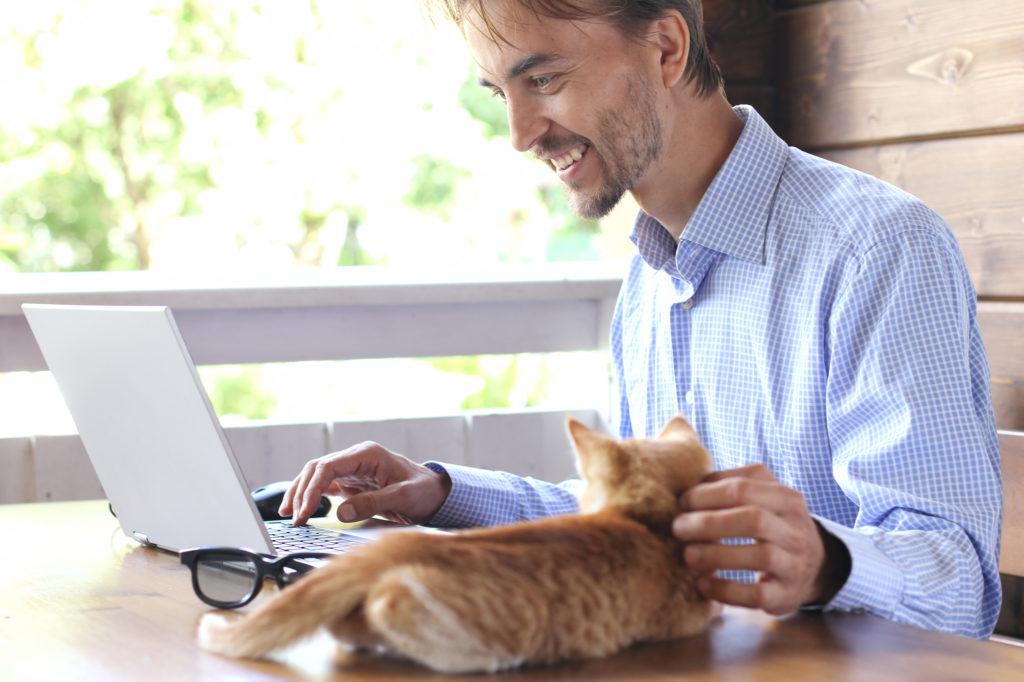 i gatti riducono il livello di stress