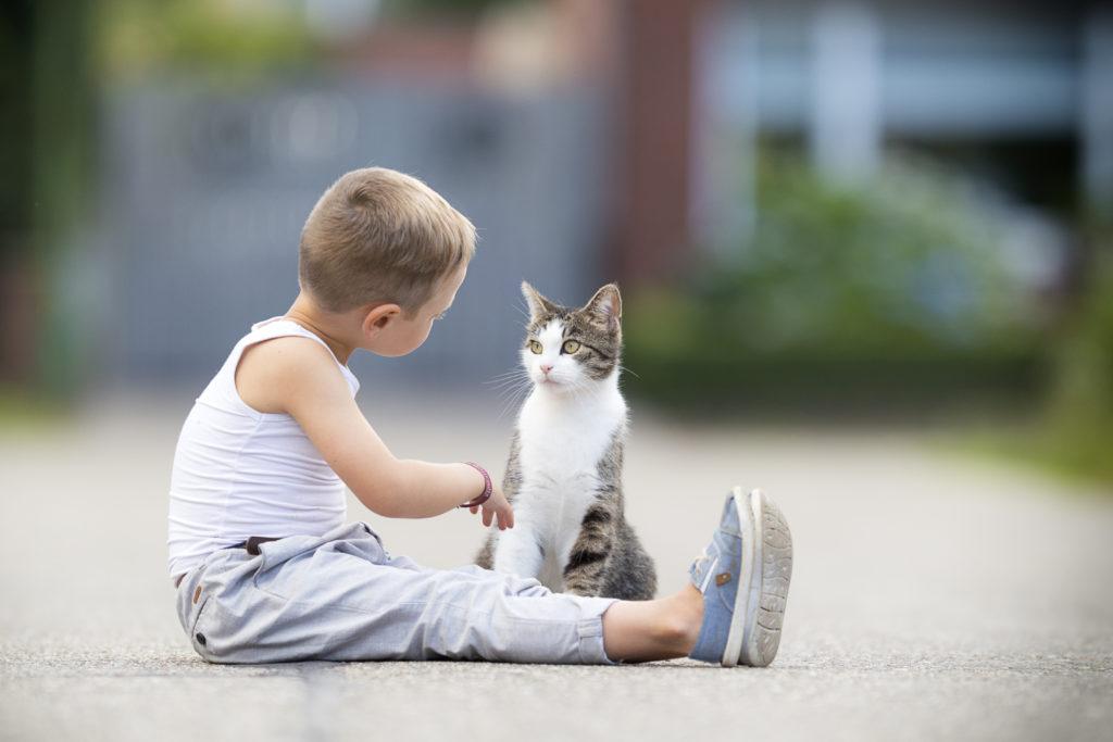 Convivere con un gatto fa bene ai bambini