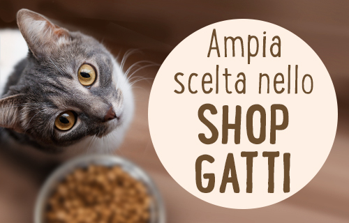 Ampia scelta nello shop gatti