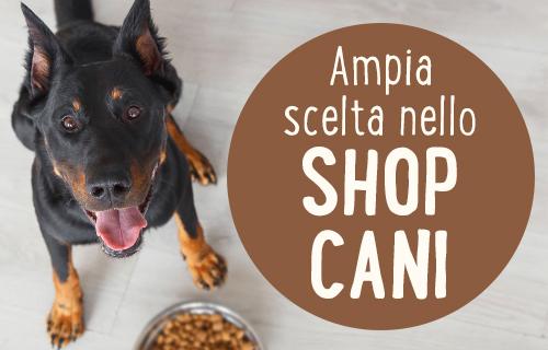 Ampia scelta nello shop cani