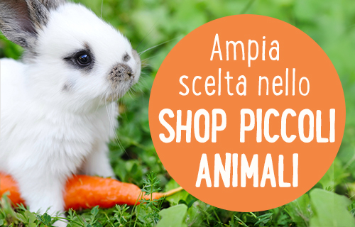 piccoli animali shop