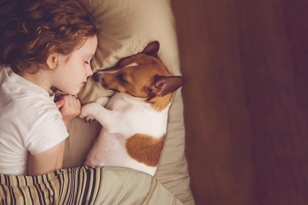 Razze canine adatte alla famiglia