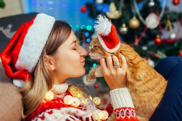 Regali di Natale… per gatti
