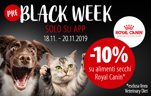 Black Days Royal Canin