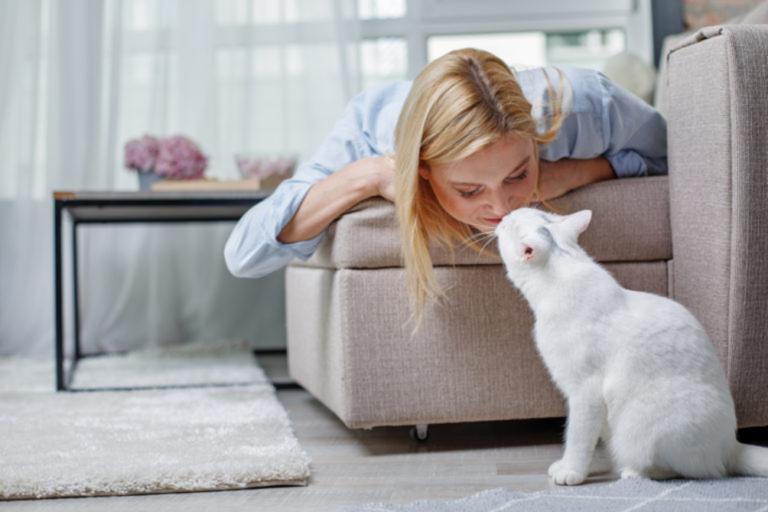 gatto in casa o libero?