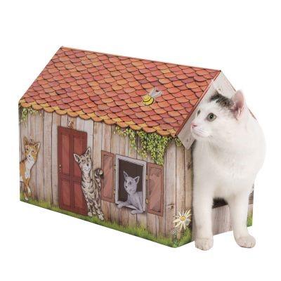 Casetta gatto